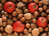 Apple  and Nut Harvest  Autumn Fruits