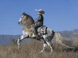 Horseman in Traditional Dress Riding Grey Andalusian Stallion  Ojai  California  USA