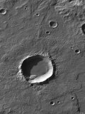 The Largest Number of Gullies on Mars Occur on the Walls of Southern Hemisphere Craters