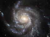 Spiral Galaxy Messier 101 (M101)