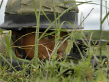 An Infantryman with the Royal Thai Marines Takes up a Position at Hatyao Beach