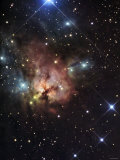 The Northern Trifid Nebula