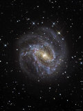 The Southern Pinwheel Galaxy