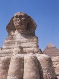 Sphinx  Giza  Unesco World Heritage Site  Near Cairo  Egypt  North Africa  Africa