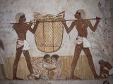 Tomb of Menna  Valley of the Nobles  Thebes  Egypt  North Africa  Africa