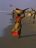 Women Carrying Fish Catch to the Market of Fishing Village  Puri  Orissa State  India