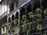 French Quarter  New Orleans  Louisiana  USA