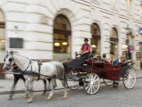 Horse-Drawn Tourist Carriage Near Hofburg  Vienna  Austria