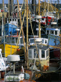 Fishing Port  Kilmore Quay  County Wexford  Leinster  Eire (Ireland)