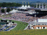 Horses Racing and Crowds  Goodwood Racecourse  West Sussex  England  United Kingdom