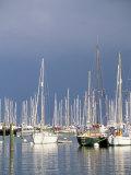 Boats at Town Quay  Lymington  Hampshire  England  United Kingdom