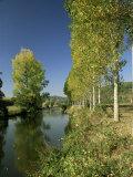 River Sarthe  Near Le Mans  Sarthe  Western Loire  Pays De La Loire  France