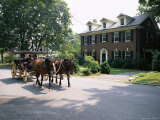Horse and Carriage in Lee Avenue  Lexington  Virginia  United States of America  North America