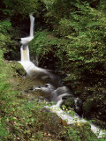 Waterfall on Hoaroak Water  Watersmeet  Lynmouth  Devon  England  United Kingdom