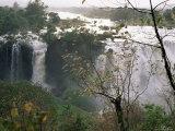 Blue Nile Falls  Lake Tana Area  Gondar Region  Ethiopia  Africa