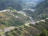 Rice Terraces at Banaue  Unesco World Heritage Site  Northern Region  Island of Luzon  Philippines