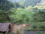 Ifugao Village of Banga-An  Northern Area  Island of Luzon  Philippines  Southeast Asia