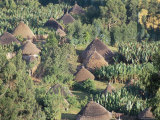 Village in the Land of the Gourague  Hosana Region  Shoa Province  Ethiopia  Africa