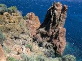 Cap De Dramont  Corniche De L'Esterel  Var  Cote d'Azur  French Riviera  Provence  France