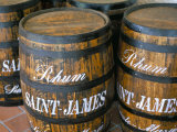 Barrels of Rum  French Antilles  West Indies  Central America
