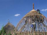 Building a Hut  Gourague Area  Shoa Province  Ethiopia  Africa