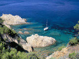 Corniche of Cap Camarat  Close to the Isle of Saint Tropez  Var  Provence