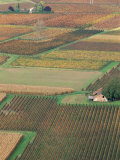 View from the Village of Belaye of the Vineyards of Cahors  Vallee Du Lot  Midi-Pyrenees  France