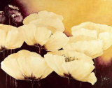 Yellow Poppies I