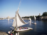 Feluccas on the River Nile  Aswan  Egypt  North Africa  Africa