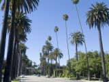 Beverly Drive  Beverly Hills  California  USA