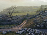 Yorkshire Dales Near Settle  Yorkshire  England  United Kingdom