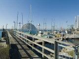 Morro Bay  California  USA