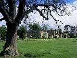 Jervaux Abbey Near Masham  North Yorkshire  Yorkshire  England  United Kingdom