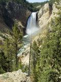 Yellowstone Canyon  Yellowstone National Park  Unesco World Heritage Site  Wyoming  USA