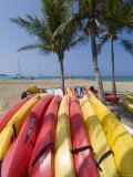 Waikaloa Beach  Island of Hawaii (Big Island)  Hawaii  USA