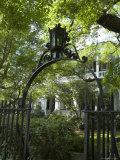 Charleston  South Caorlina  USA