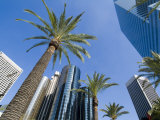 Downtown  Bonaventure Hotel in Background  Los Angeles  California  USA