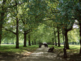 Green Park  London  England  United Kingdom