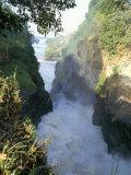 Murchison Falls  Murchison Falls National Park  Uganda  East Africa  Africa