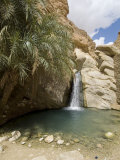 Desert Oasis  Chebika  Tunisia  North Africa  Africa