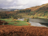 Loughrigg Fell  Rydal  Lake District National Park  Cumbria  England  United Kingdom