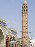 Tozeur  Tunisia  North Africa  Africa