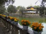 Dalai Lama's Former Summer Palace  Lhasa  Tibet  China