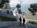 Sidi Bou Said  Tunisia  North Africa  Africa