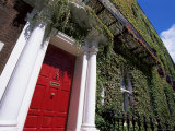 Red Door and Ivy Covered Building  St Stephens Green  Dublin  Eire (Republic of Ireland)
