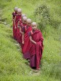 Buddhist Monks from Karchu Dratsang Monastery  Jankar  Bumthang  Bhutan