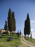 Farmhouse Called Il Belvedere Near San Quirico  Val d'Orcia  Tuscany  Italy