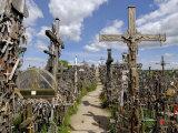 Hill of Crosses  Near Siauliai  Lithuania  Baltic States