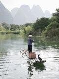 Fisherman with Cormorants  Yangshuo  Li River  Guangxi Province  China