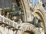 Horses on St Marks  Venice  Veneto  Italy